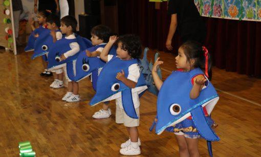 Casuarinas preschool